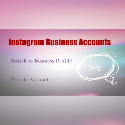 Instagram Business Accounts